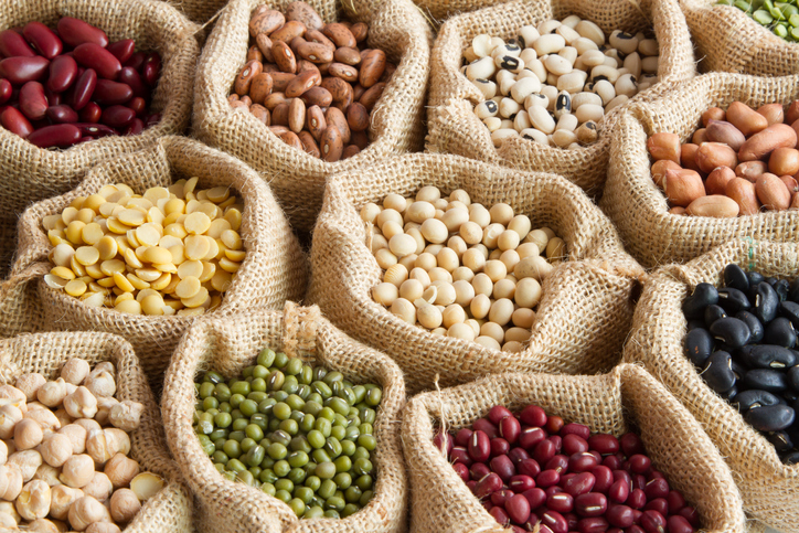plant-based-protein-alternatives